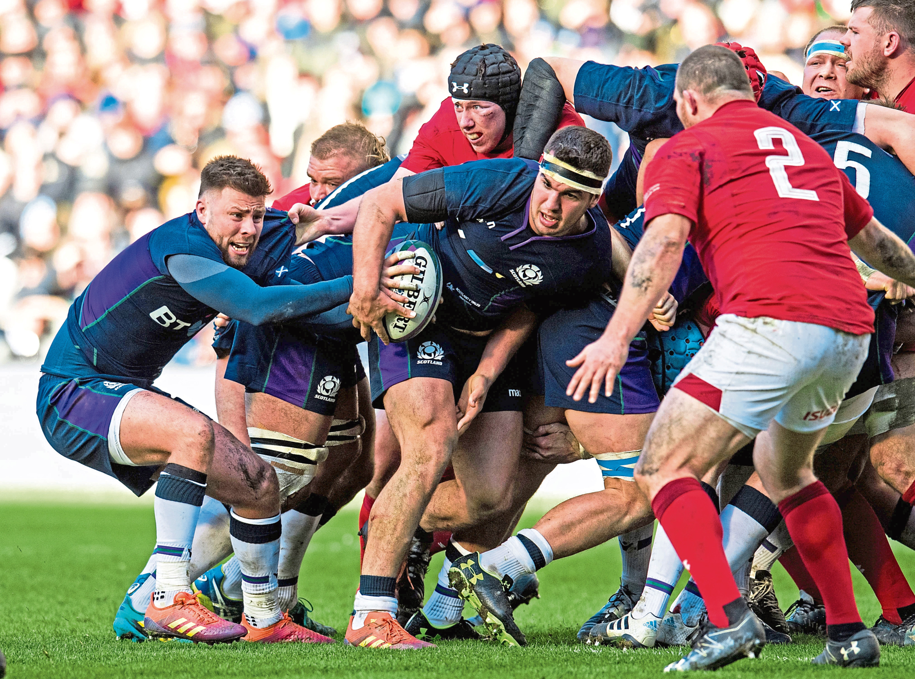 Scotland's Ali Price (L) takes the ball form the back of the maul against Wales.