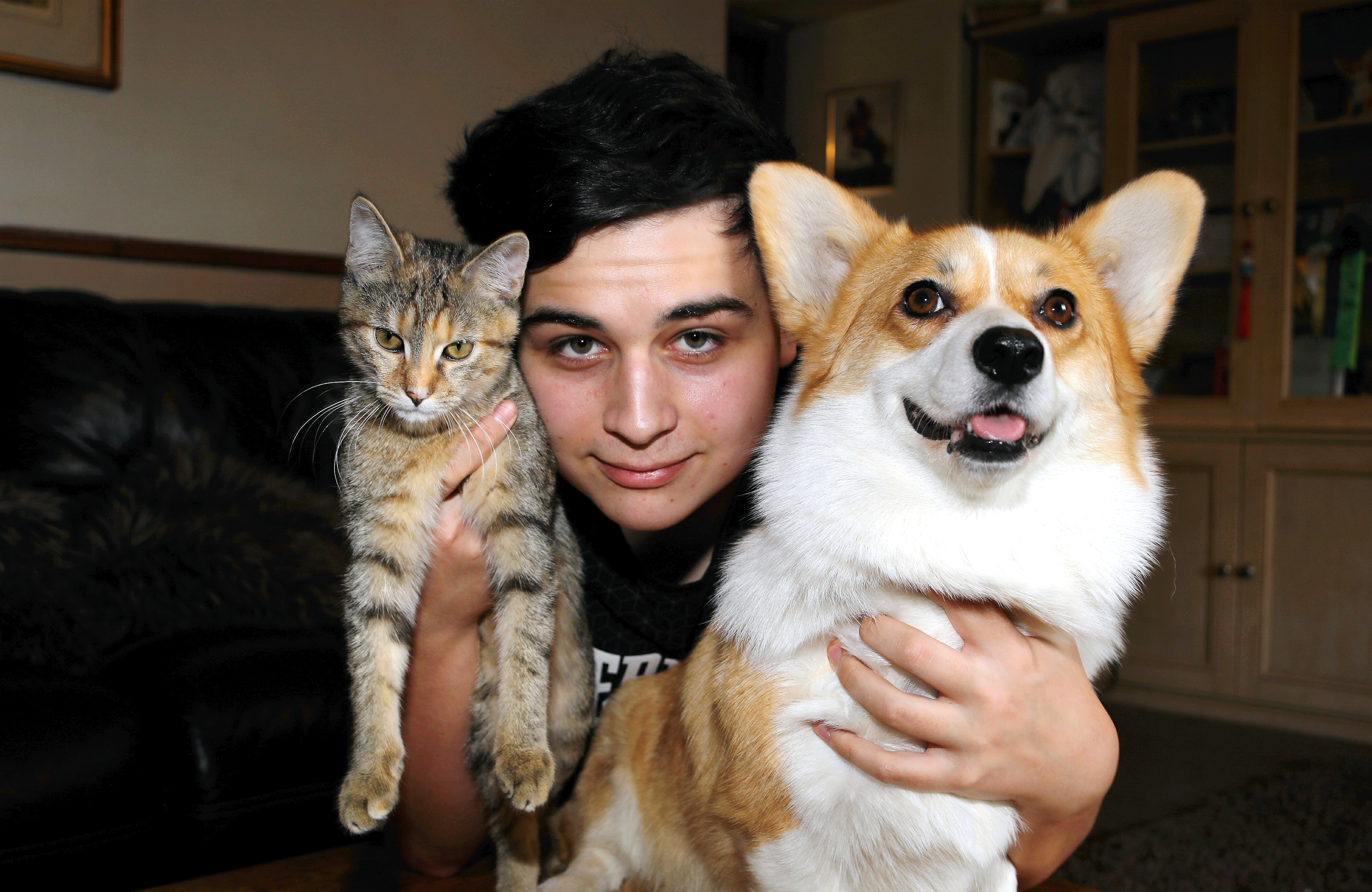 Corgi Dream with cat pal Spruce and 17-year-old Jason Logie