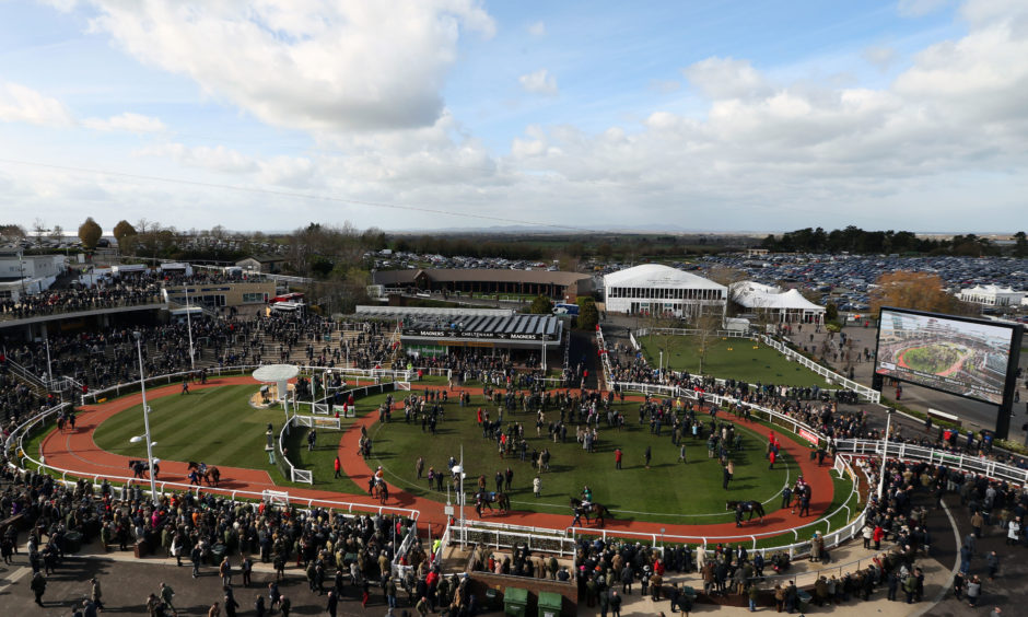 Racehorses in the Parade Ring before the JLT Novices' Chase during St Patrick's Thursday of the 2019 Cheltenham Festival at Cheltenham Racecourse.