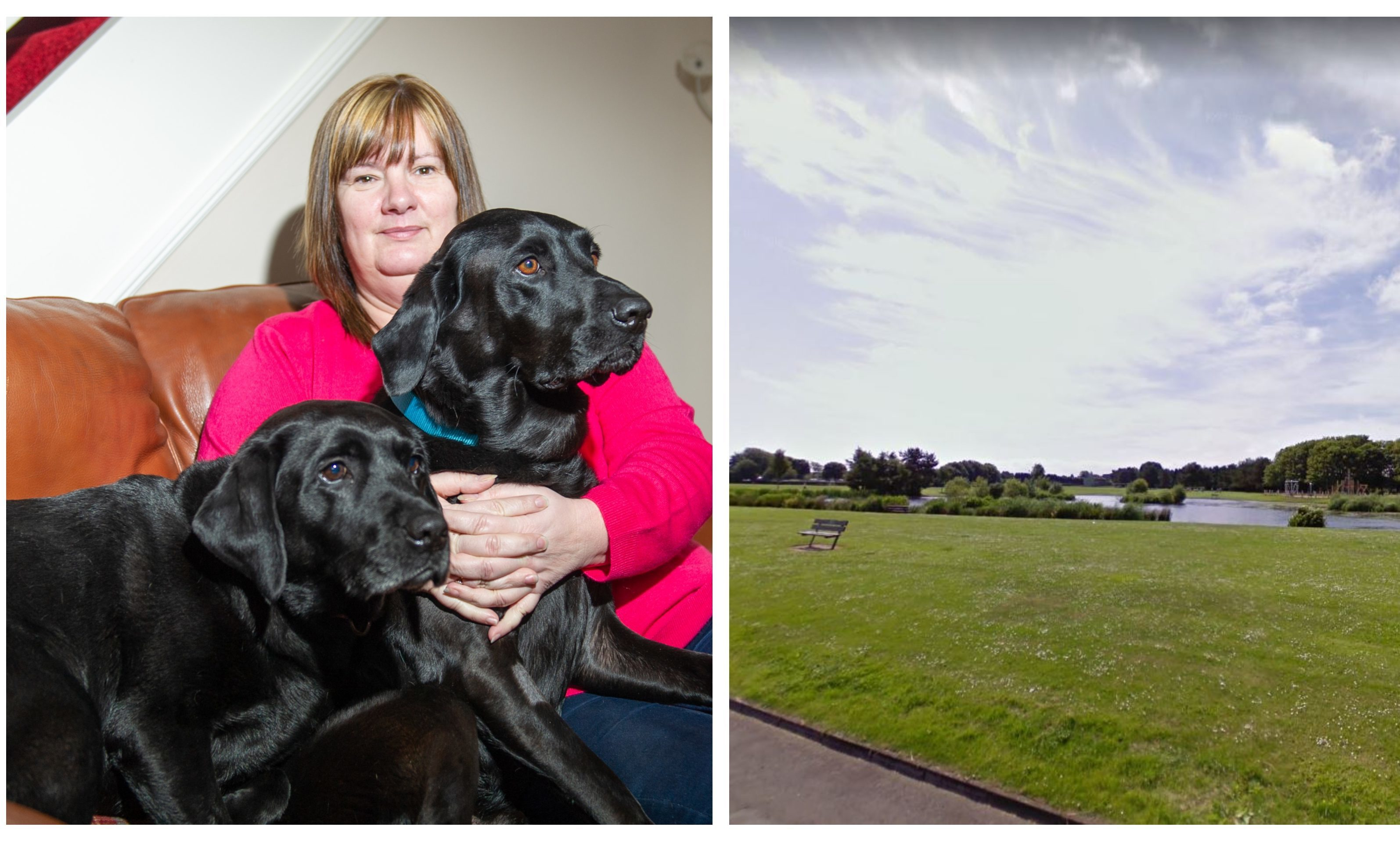 Norma Anderson with dogs Ailsa and Mason. Right: Tayport Common.