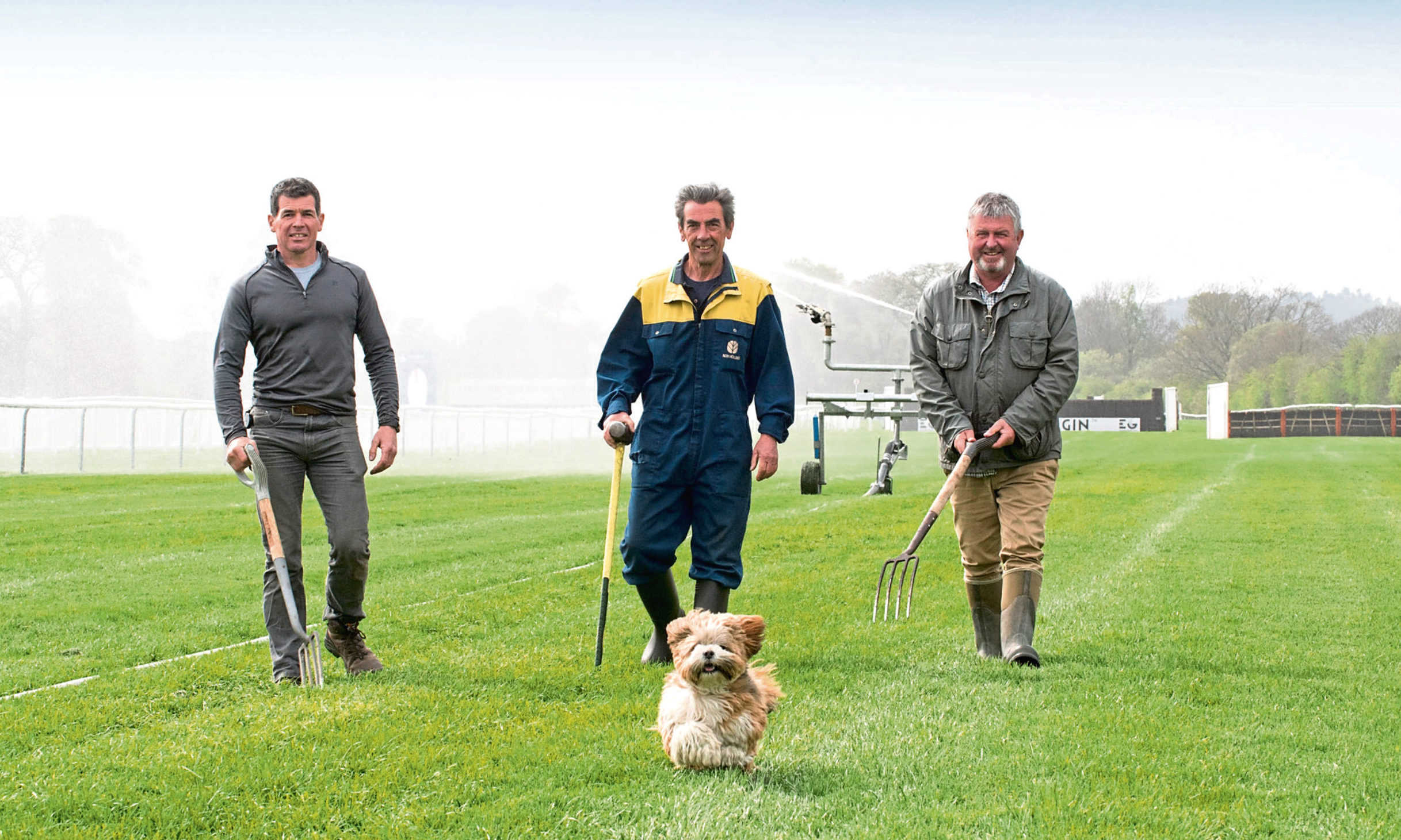 "Perth Races Preparations Photo, right, Donald Gow Head Grounds man, with  team members , Derek Halley & centre, Jack McFeat and Pet Lhasa Apso  ""Missy"" trying the course."