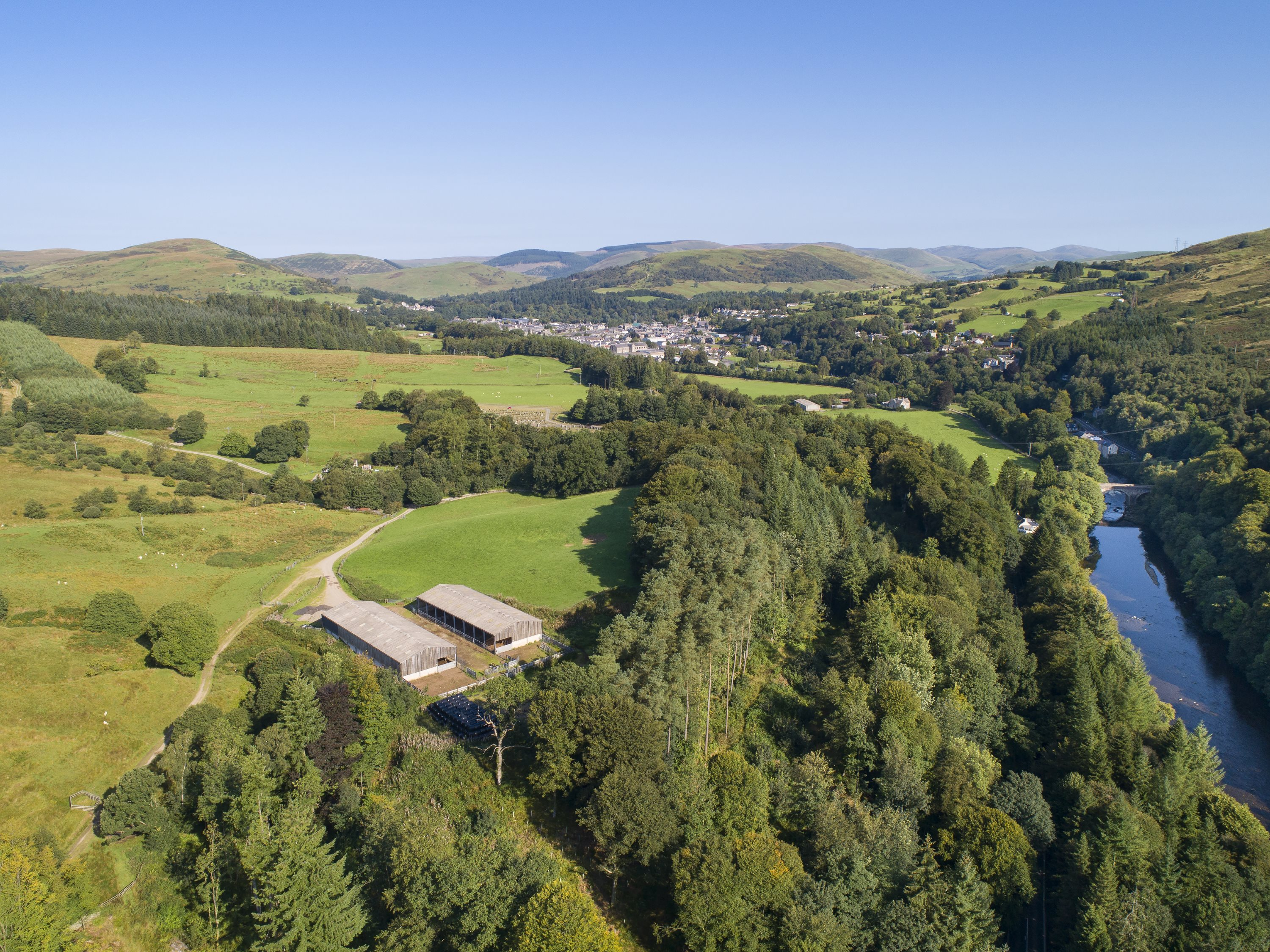 Much of the land sold by Buccleuch Estate in recent years has been bought for afforestation.