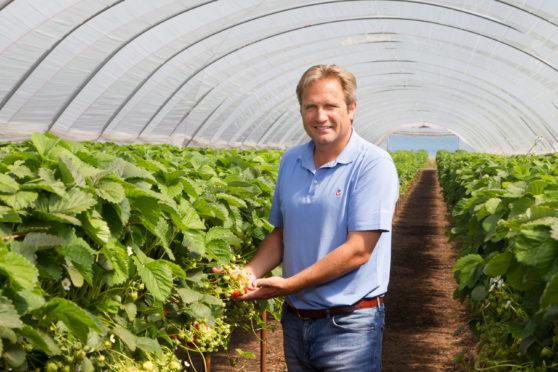 Angus Soft Fruits chairman  Lochy Porter.
