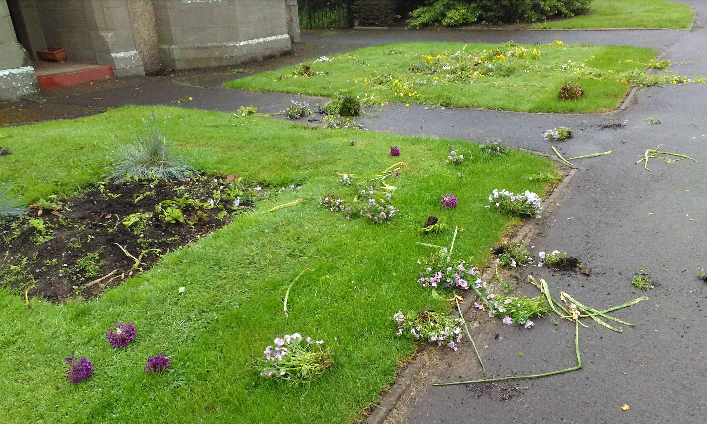 The damage at Boyle Park