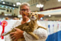 Pat Shand with Dysha, a Seal Tabby Pointed Siamese, Caird Hall.