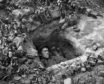 1944: An American GI asleep in a trench in Normandy.