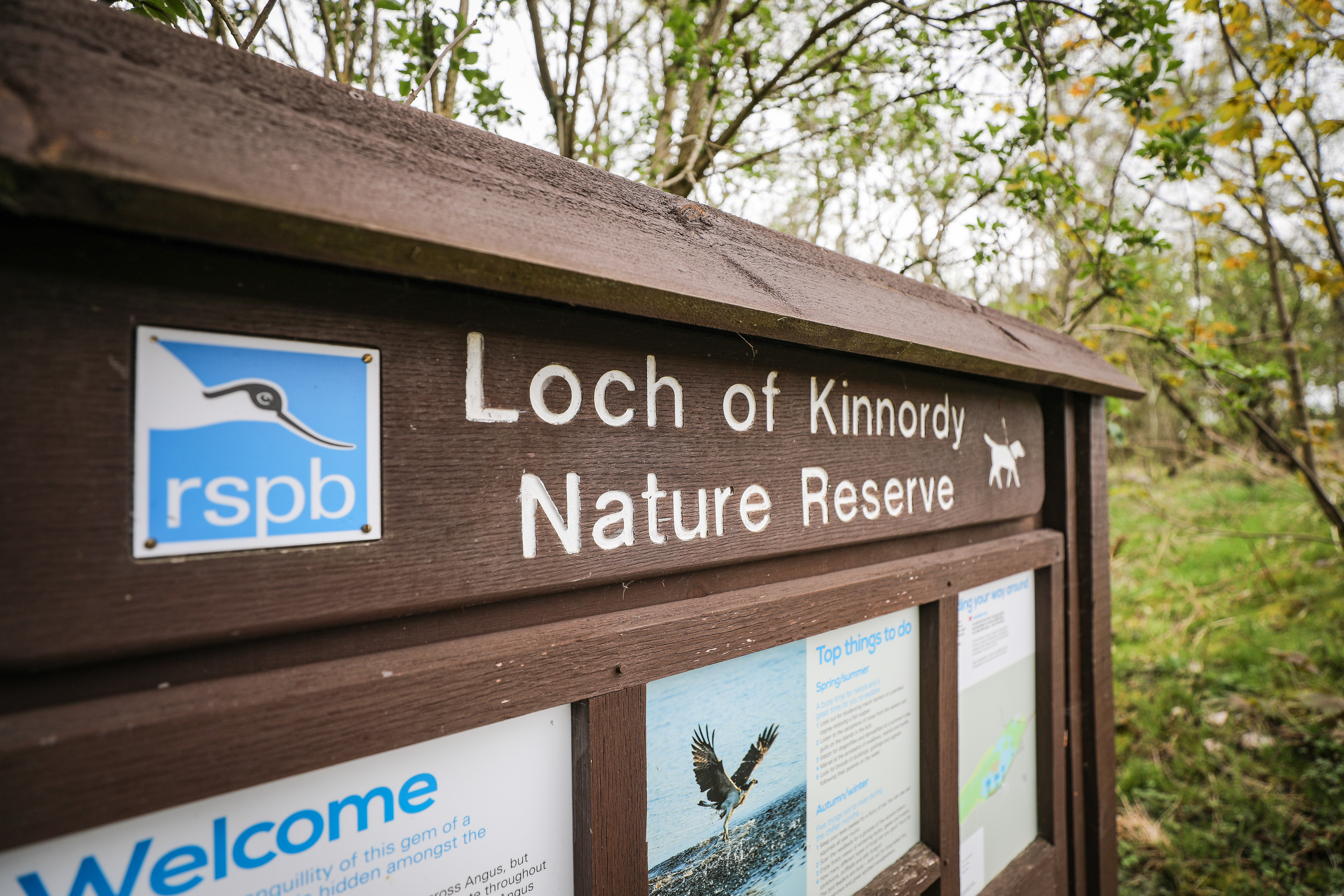 Loch of Kinnordy Nature Reserve, where Steven Donaldson's charred remains were found.