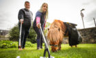 Sarah Harrison and Ralph Coutts with Glen the Shetland Pony at St Vigeans.
