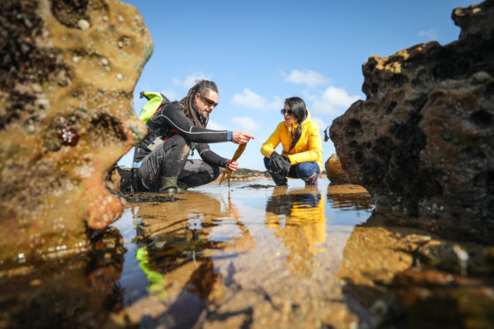 Jayson Byles talking Gayle through the different types of seaweed at Kingsbarns.