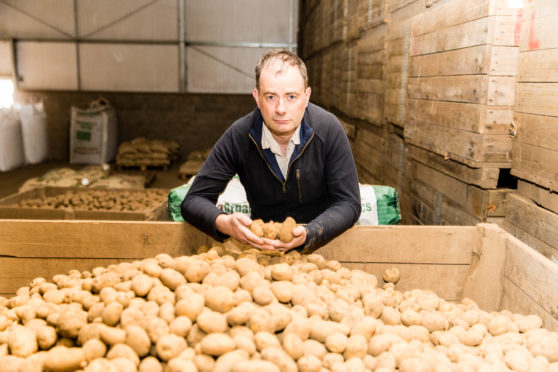 Andrew Skea, seed potato producer and exporter with Skea Organics