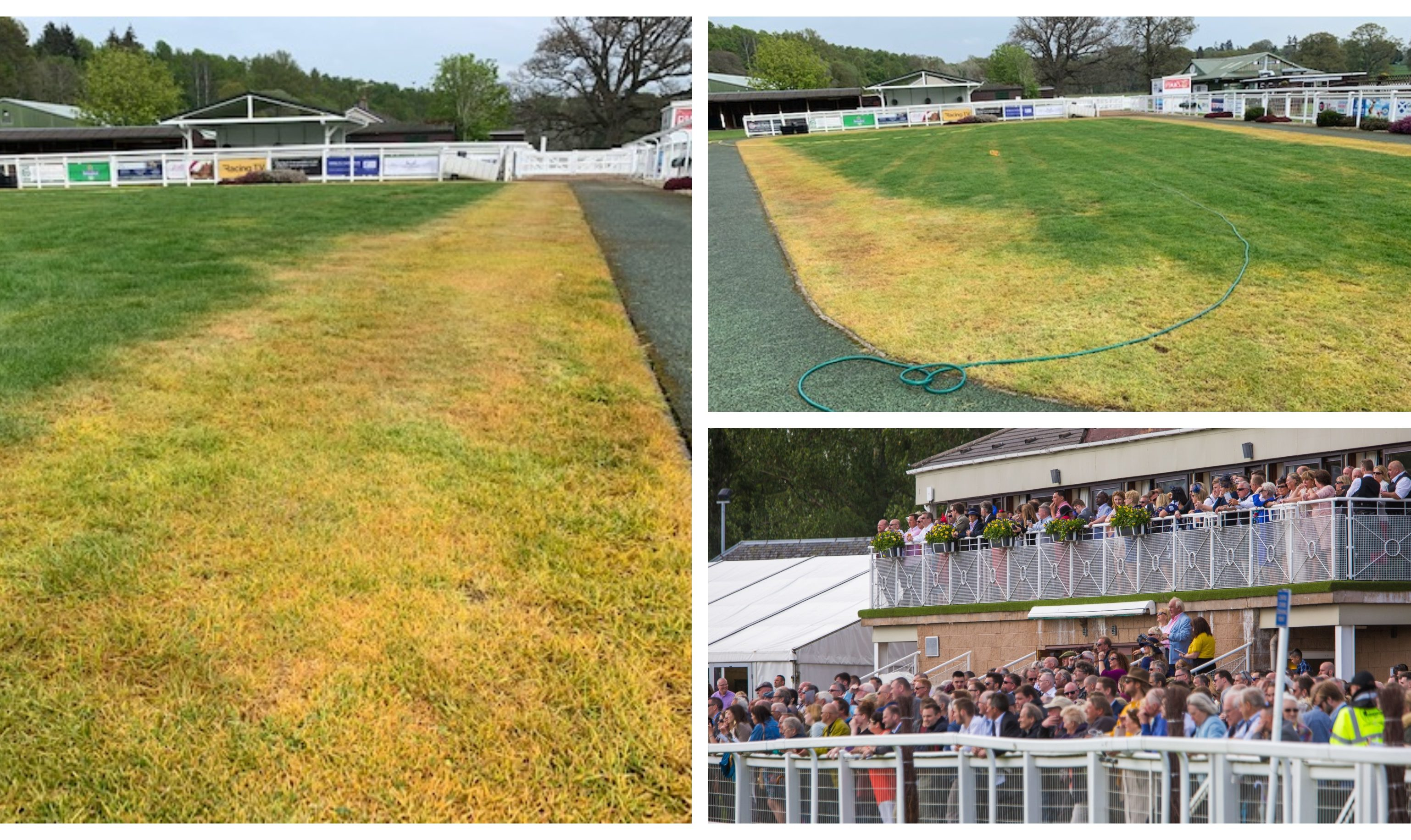 Damage to the presentation area of Perth Racecourse has been caused by an unknown chemical.