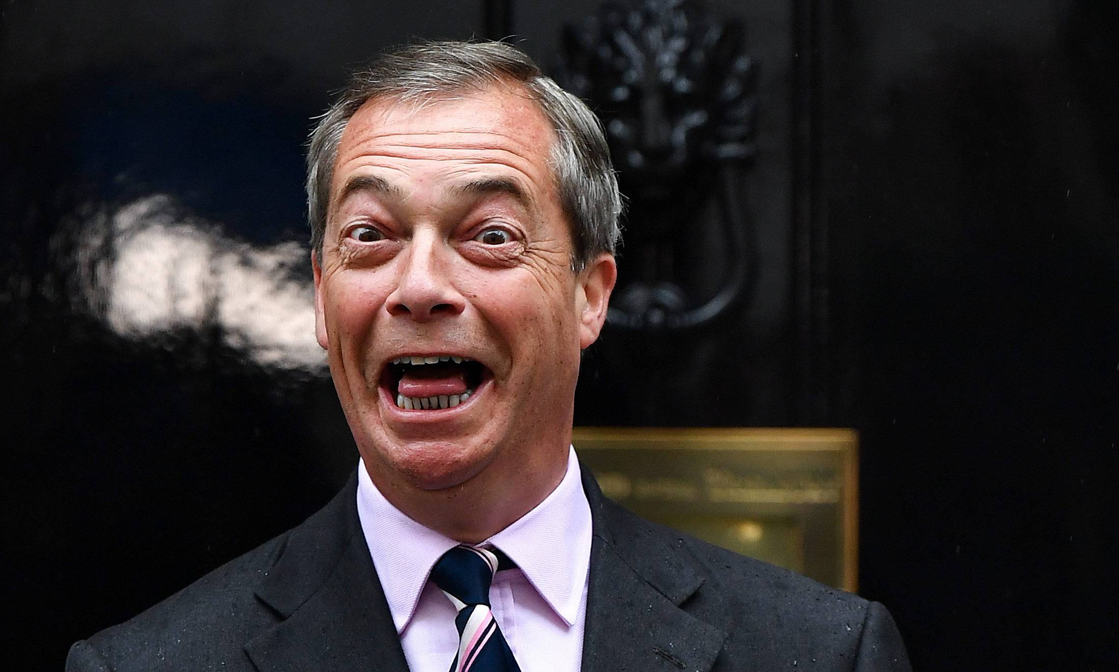 Nigel Farage, leader of the Brexit party.