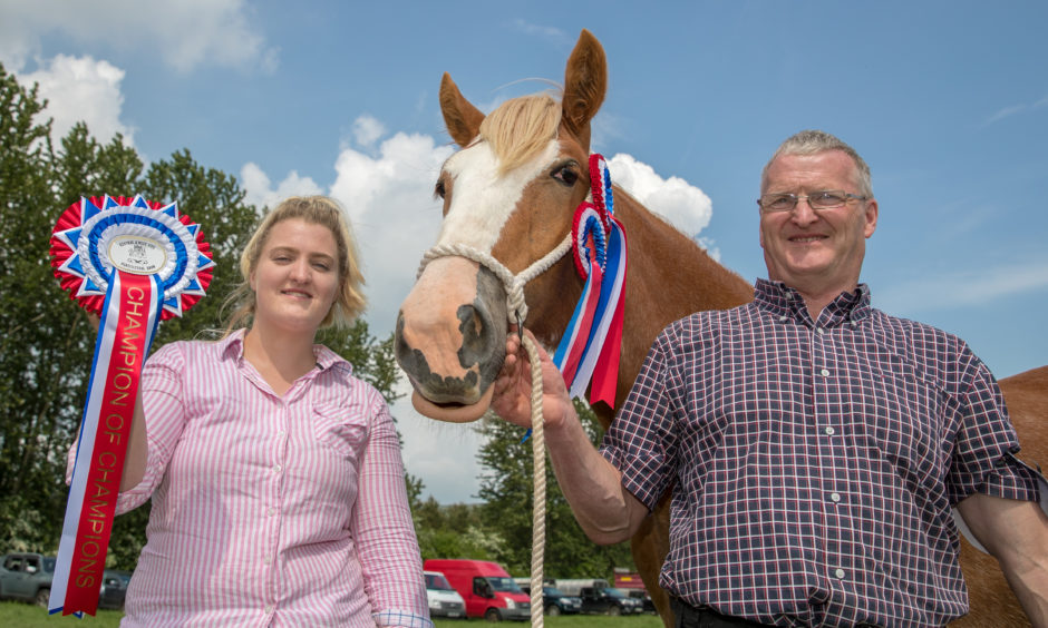 Thomas Clark and his daughter Gillian with Muirton Margo who won the champion Clydesdale and champion of champions.