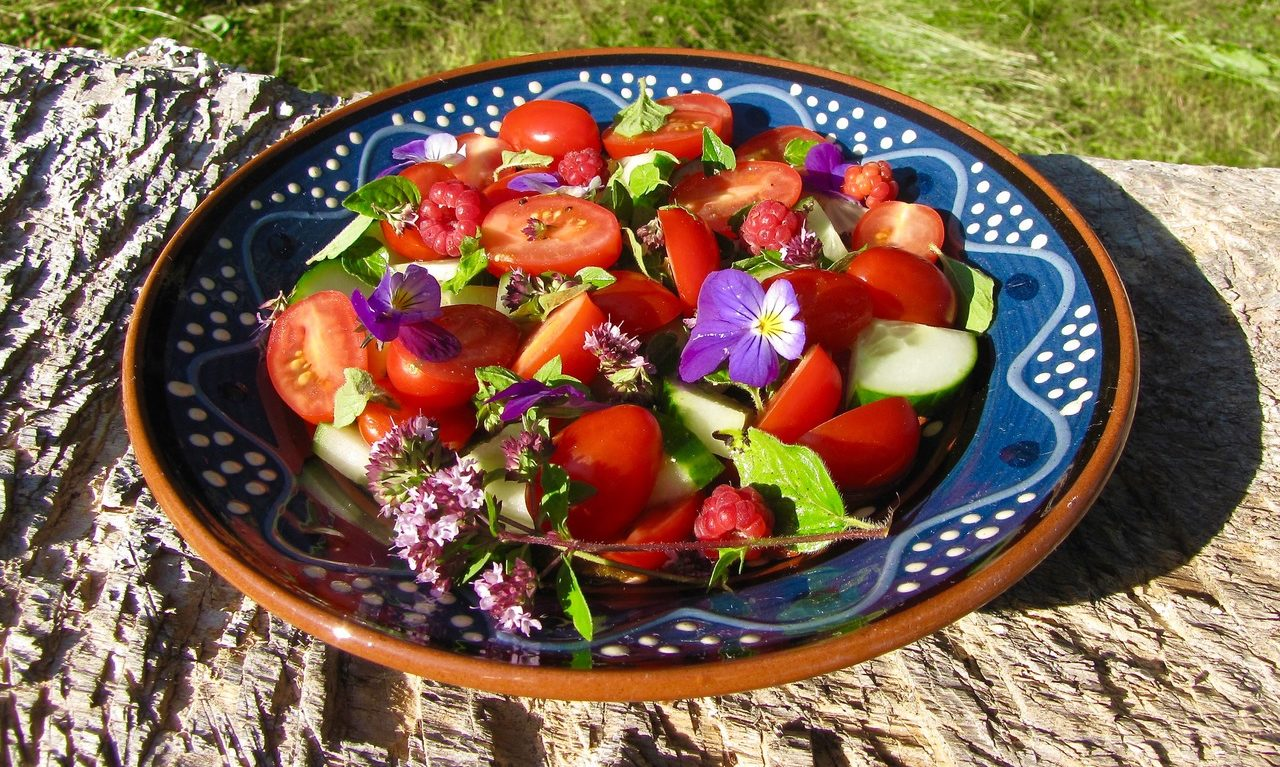 A tasty salad made from foraged ingredients.