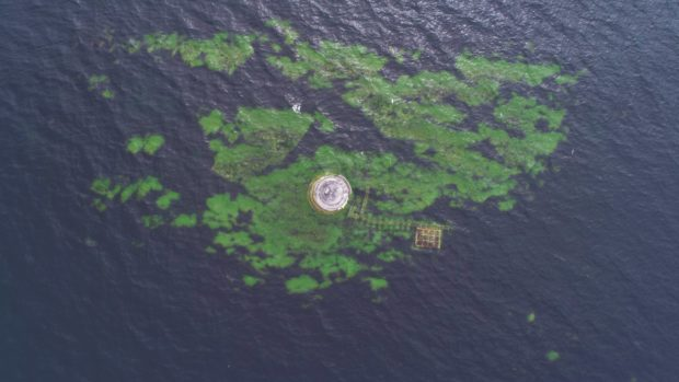 Arbroath drone pilot David Brown captured the seagull's eye view of the Bell Rock lighthouse,