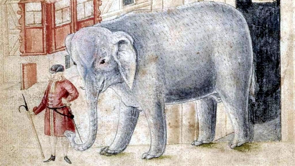 A drawing of the elephant at the time it was paraded for entertainment.