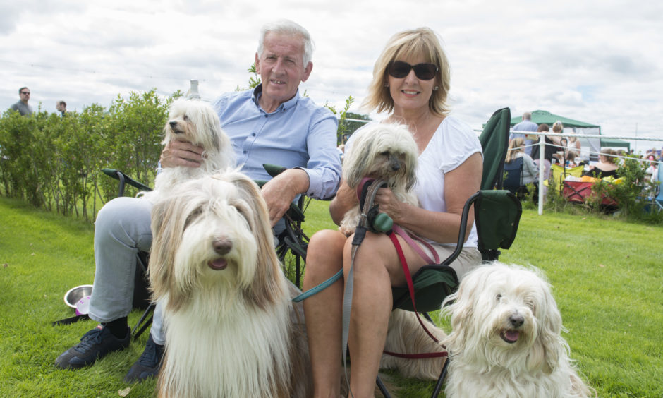 Alan Kilney and Morage Calley enjoy their day out with dogs Charli, Abbie, Misha and Bodhi.