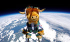 Highland Coosmonaut BuzzBo enters the atmosphere