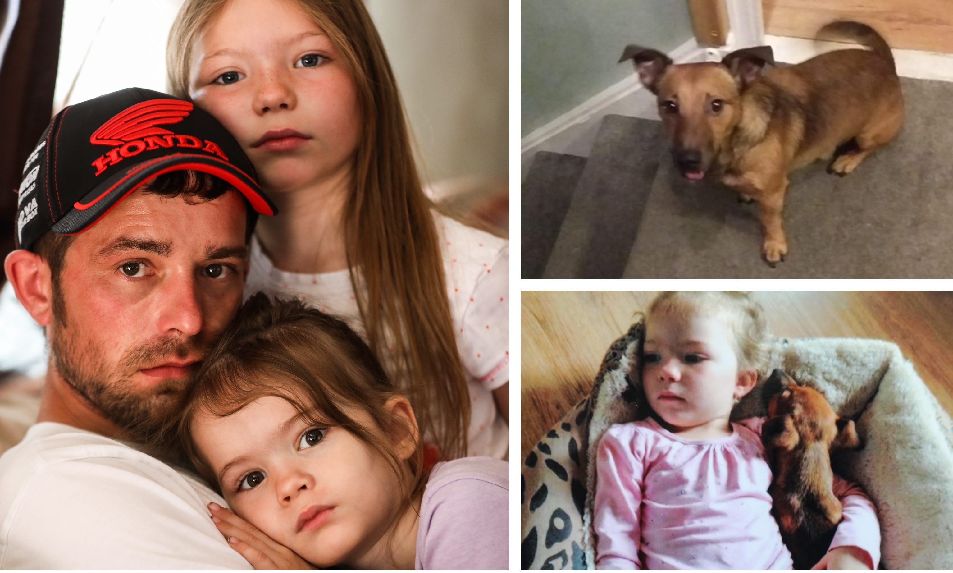 Alistair Dick and daughters Marnie and Maddie have been left devastated by Bailey's death.