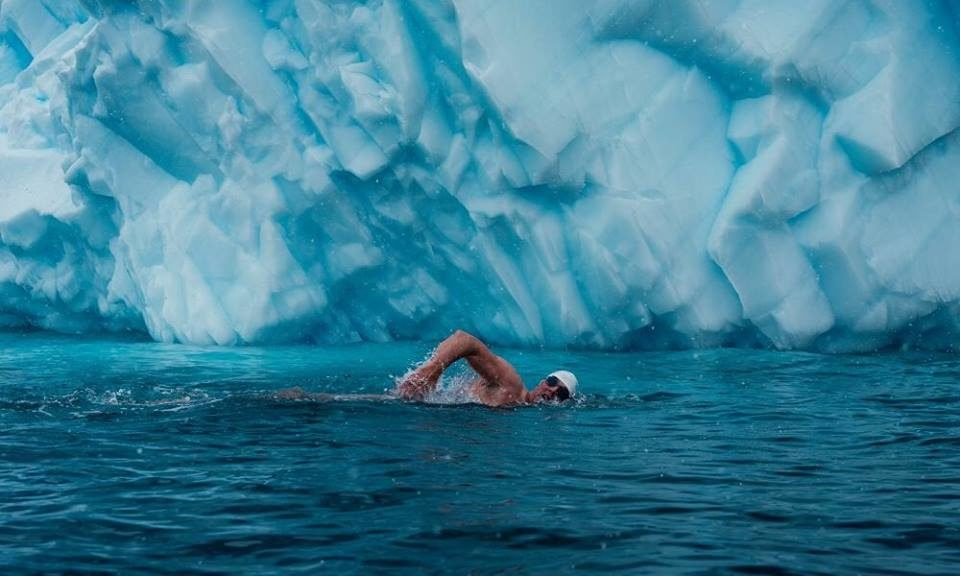 Lewis Pugh polar swimming