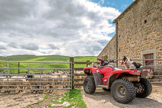 Farm quads are a popular target for thieves.