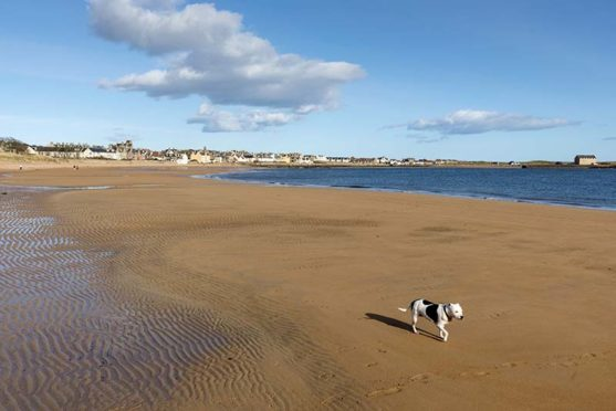 Elie and Earlsferry is a hotspot for holiday homes.