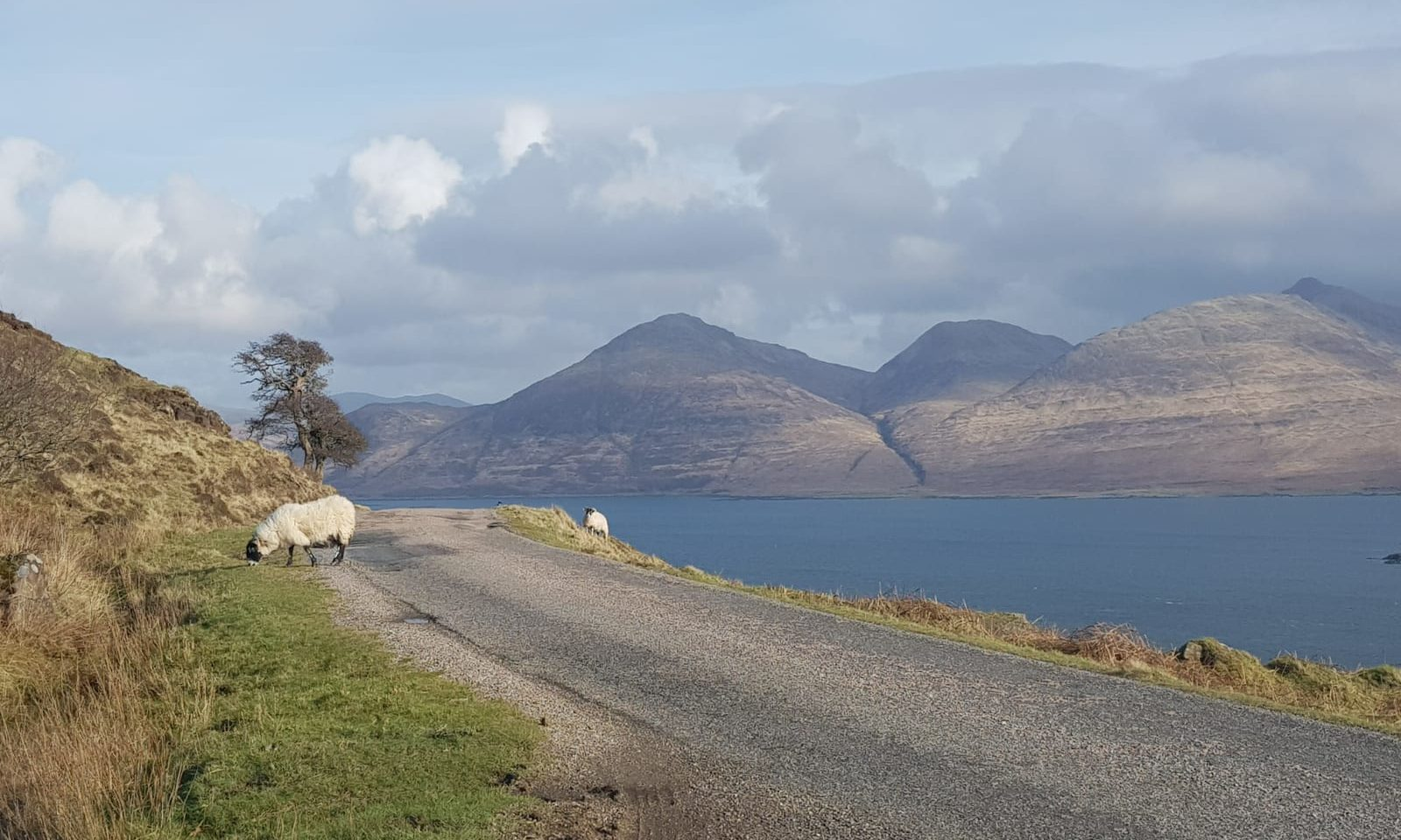 Views of Ben More on the Isle of Mull