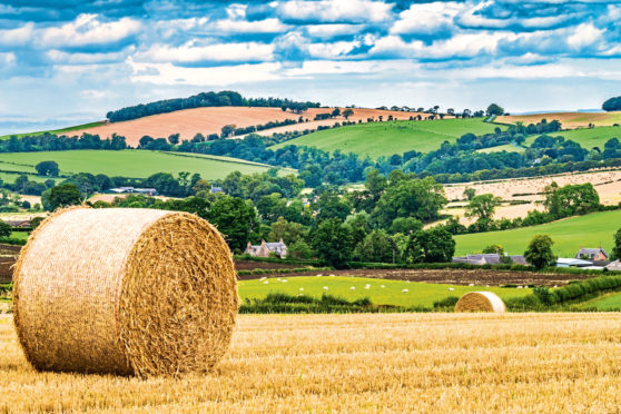 The Bew Review has set out its conclusions on how agricultural funding should be allocated.