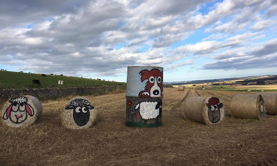Artist Fleur Baxter's piece on the farm.