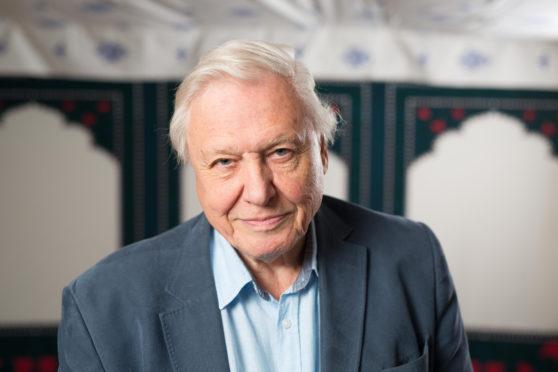 Sir David Attenborough has put his hand in his pocket to help Cowdenbeath