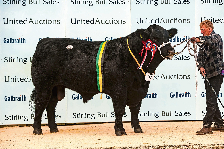 Overall champion in the Aberdeen-Angus contest was Blelack Dakota.