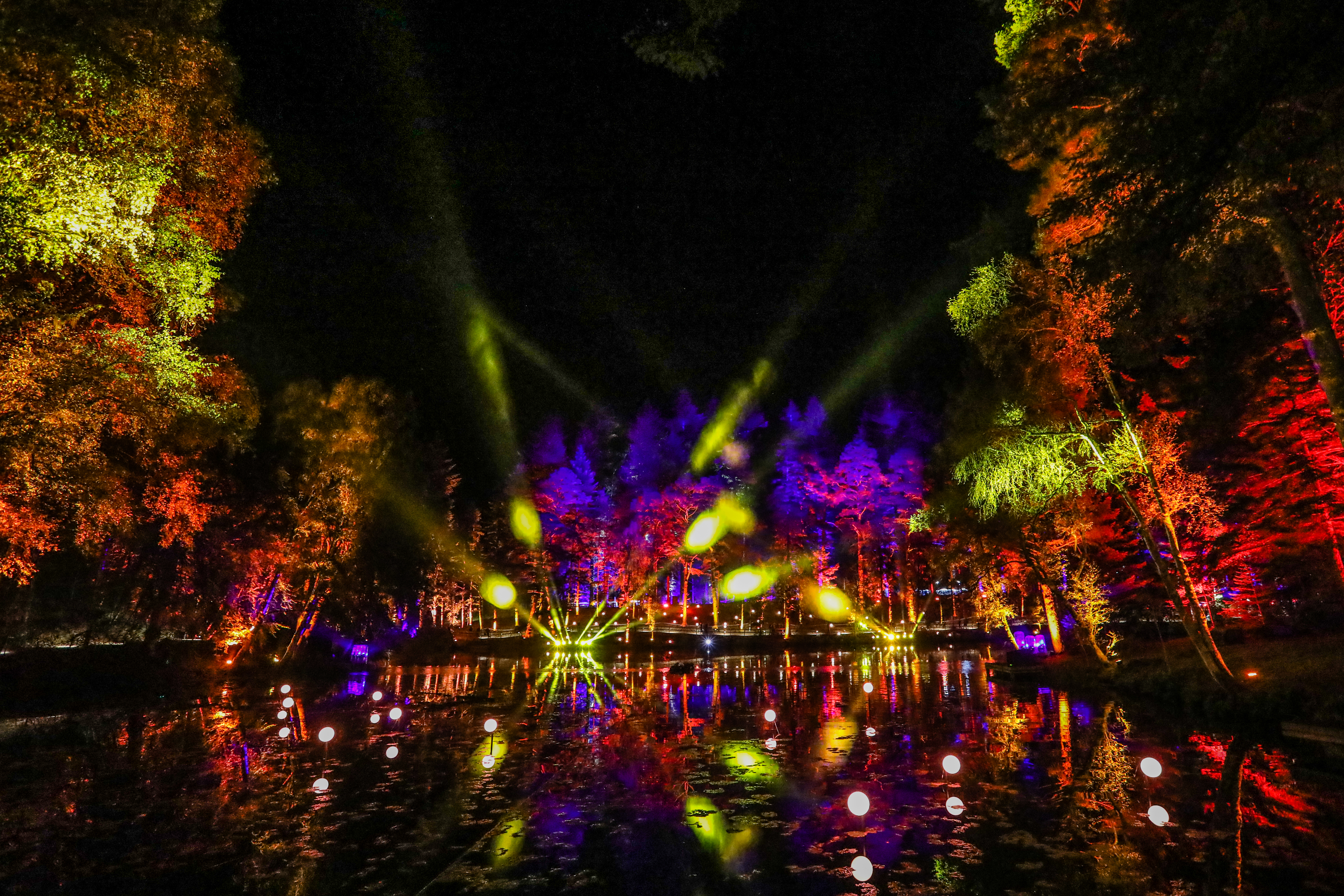 The Enchanted Forest event went ahead, despite the power cut.
