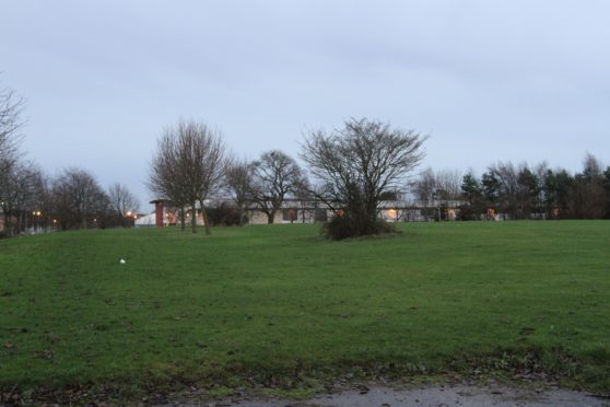 The green space where the homes will be built.