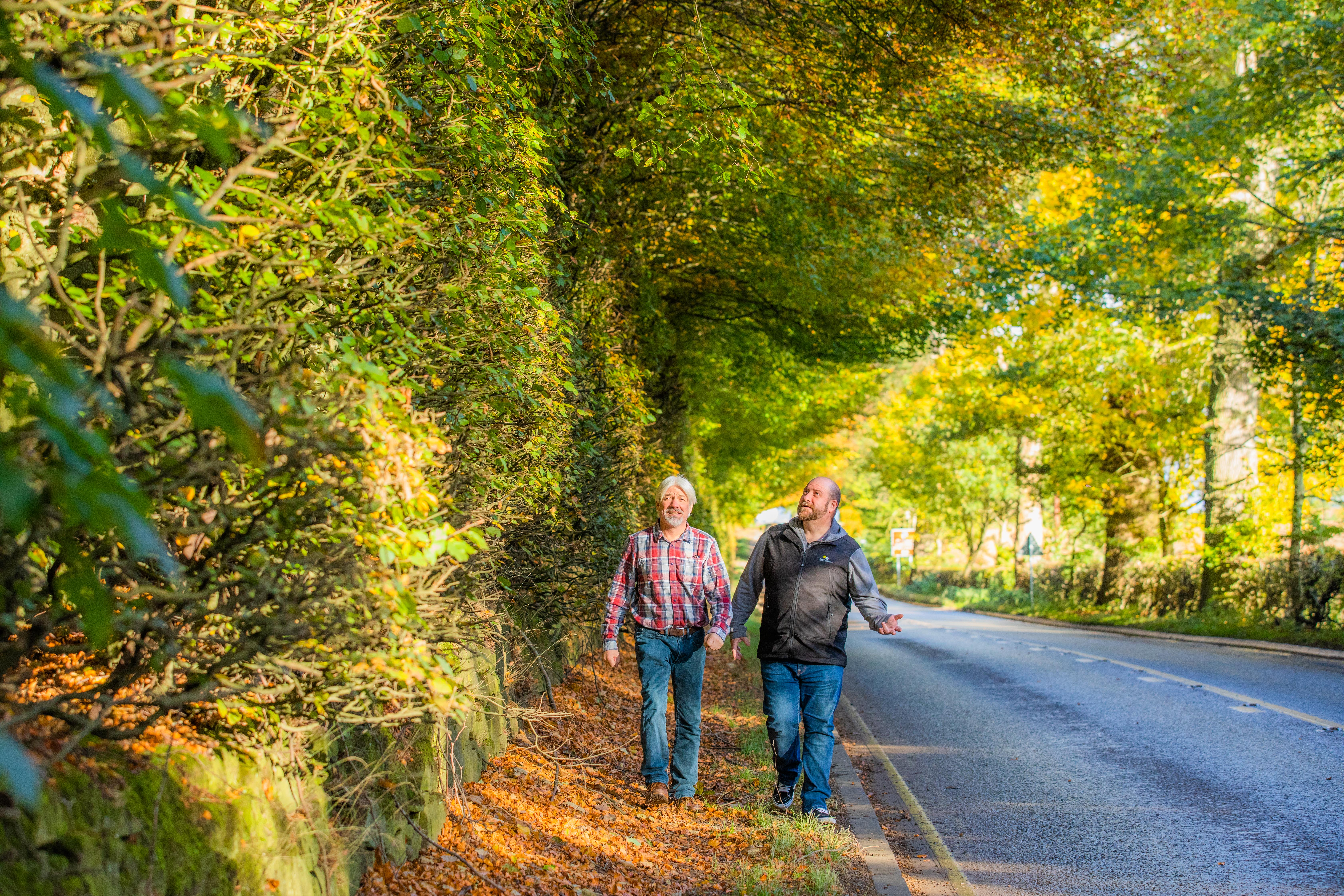 Councillors Grant Laing and Tom McEwan visit famous Meikleour Beech Hedge ahead of trim work.