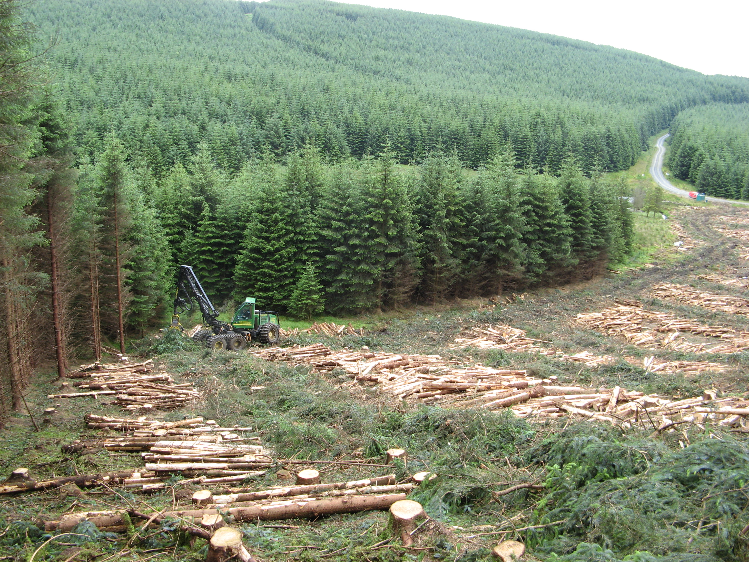 Experts from Scottish Forestry and Euroforest will be on hand to give advice.