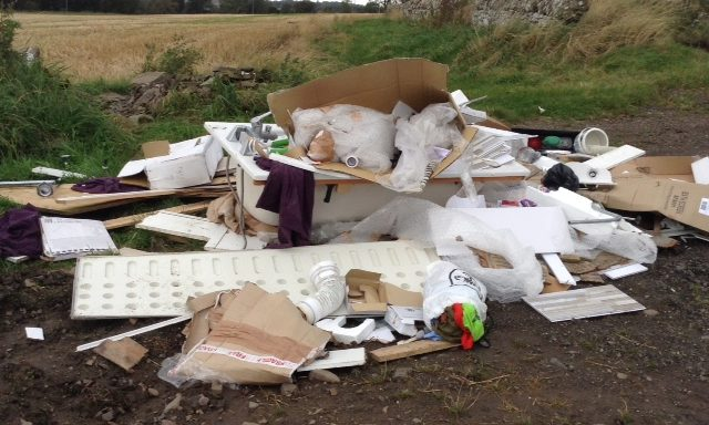 The dumped household improvement waste