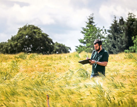 The James Hutton Institute is at the forefront of researching different crops and effect on the environment.