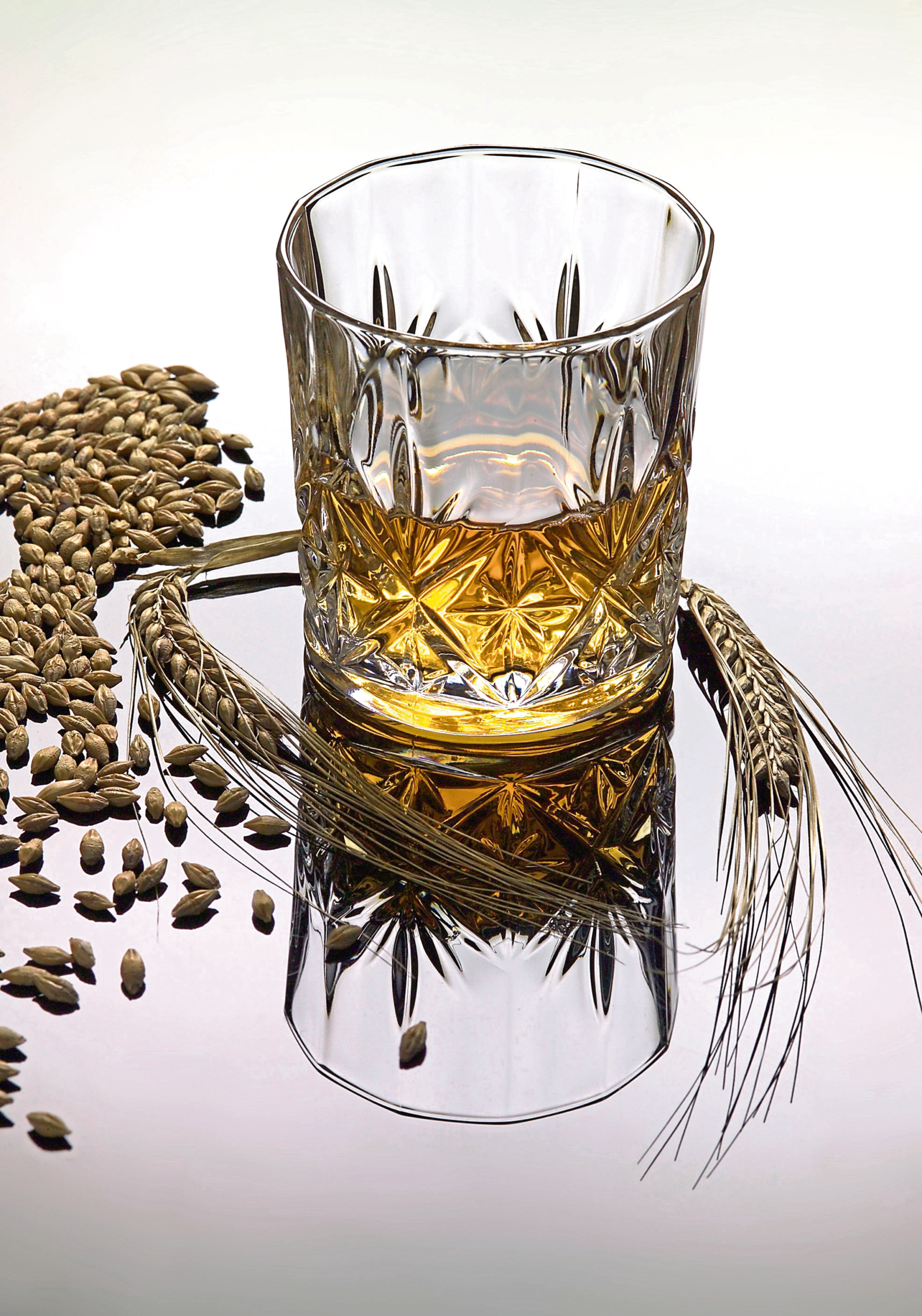 Without barley there is no Scotch whisky.