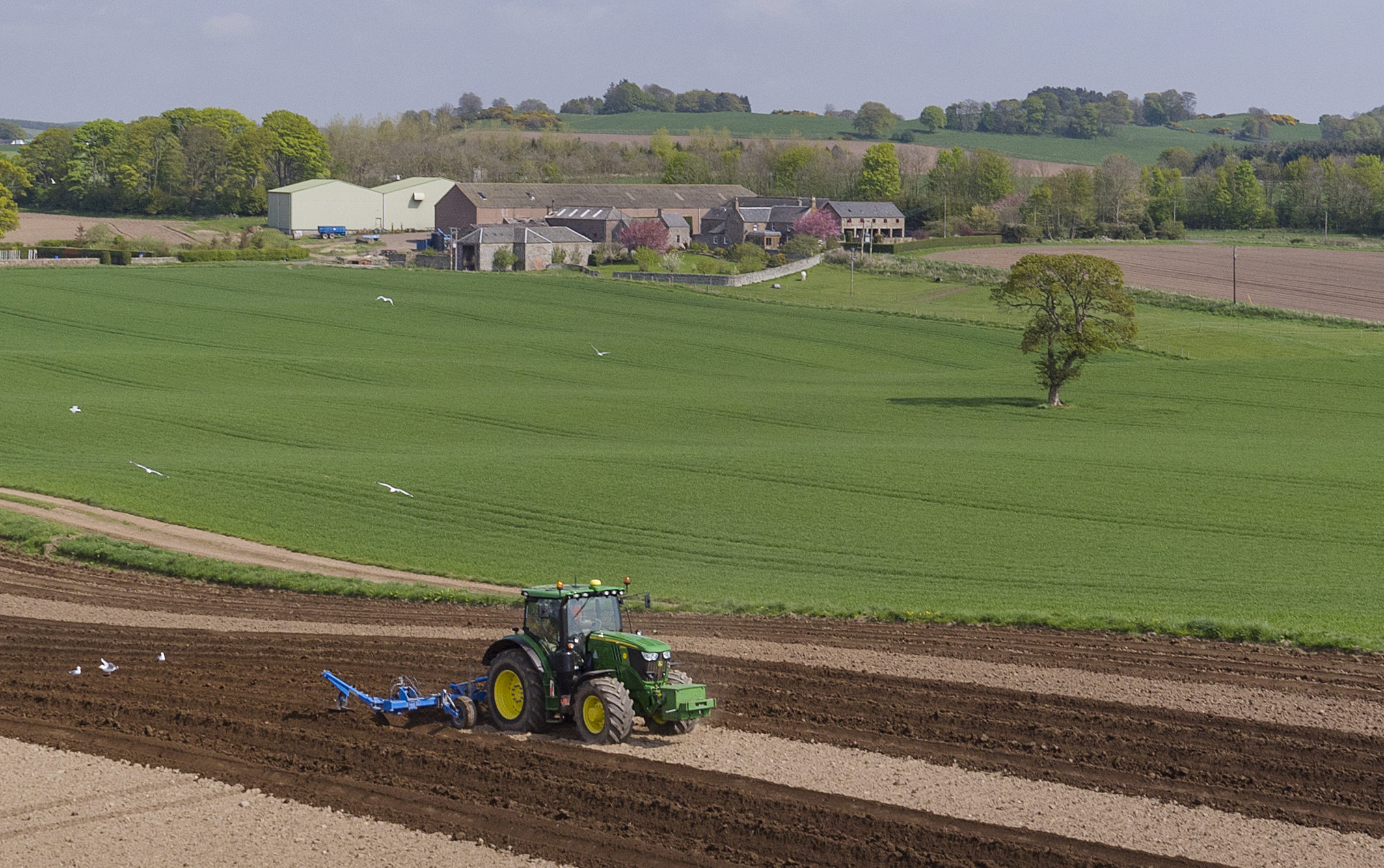 Only 21,000 acres of farmland were marketed publicly in Scotland in the first nine months of 2019
