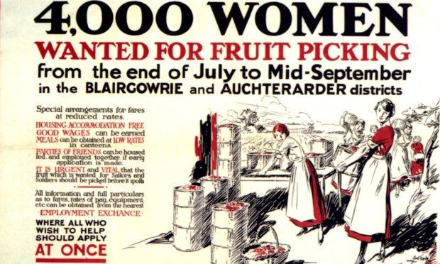 Fruitpicking poster