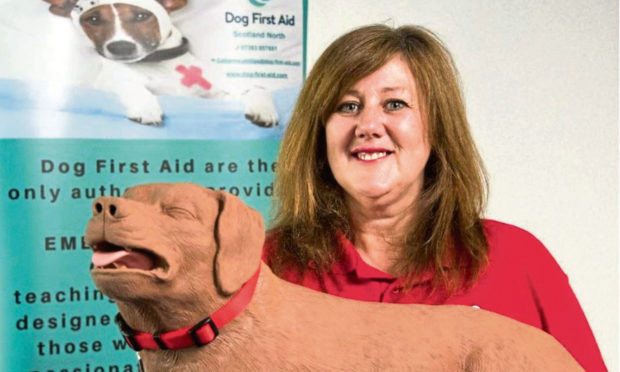 Catherine Pillips will be offering dog first aid courses in Courier Country.