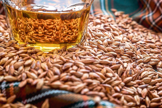 There are fears that trade barriers and diverging standards could undermine Scotland's cereals market.