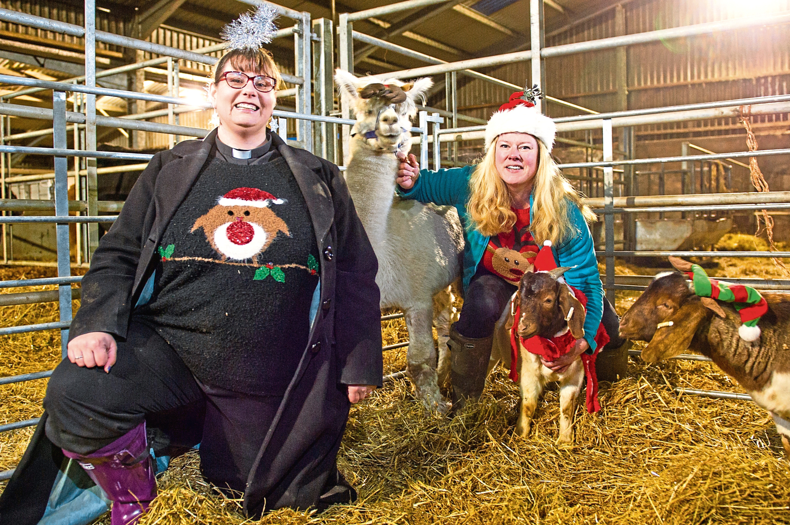 The Rev Maggie Hunt is going to conduct a special farmers' Christmas carol service in Forfar Mart. She is pictured with Louise Nicoll, alpaca Bolt and goats Michael and Lucius.