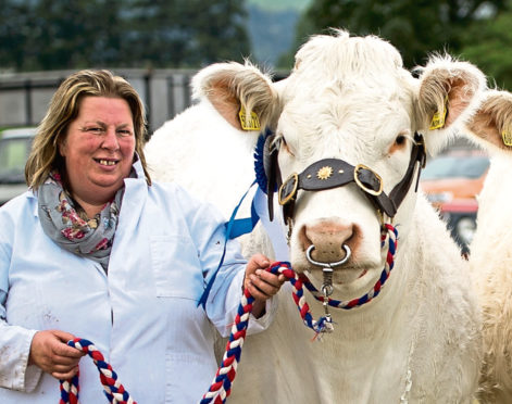 Tracey Nicol will judge the beef young handler competition.