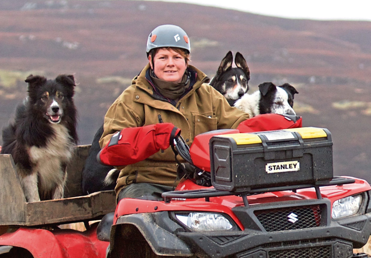 Sutherland sheep farmer Joyce Campbell chaired the committee..