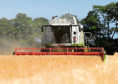 The collapse of the AMOC currents due to climate change would devastate arable farming in the UK, say scientists.