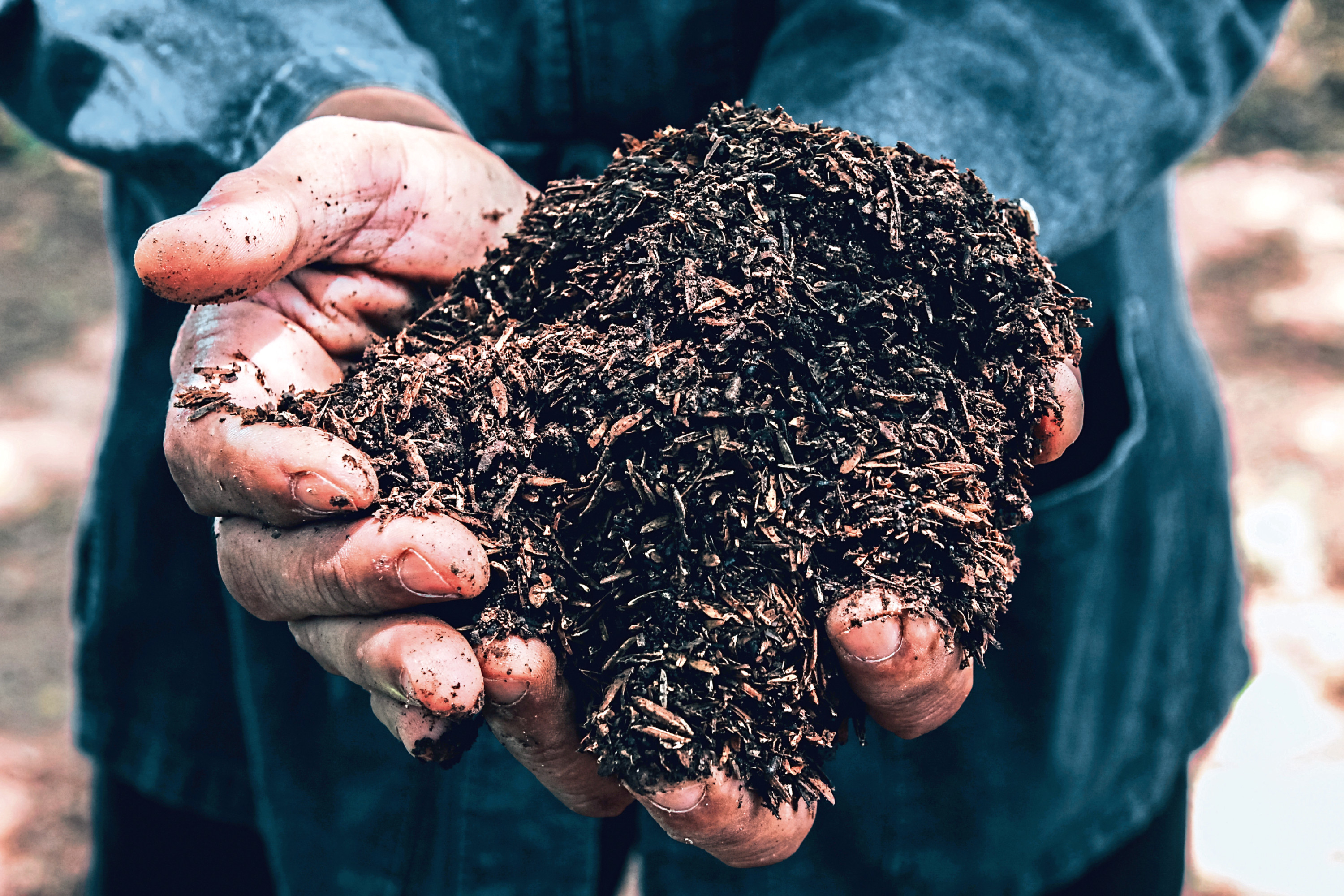 Data will be gathered on a range of measures, including soil.