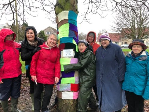 Members braved a wet afternoon to wrap the trees up warm.