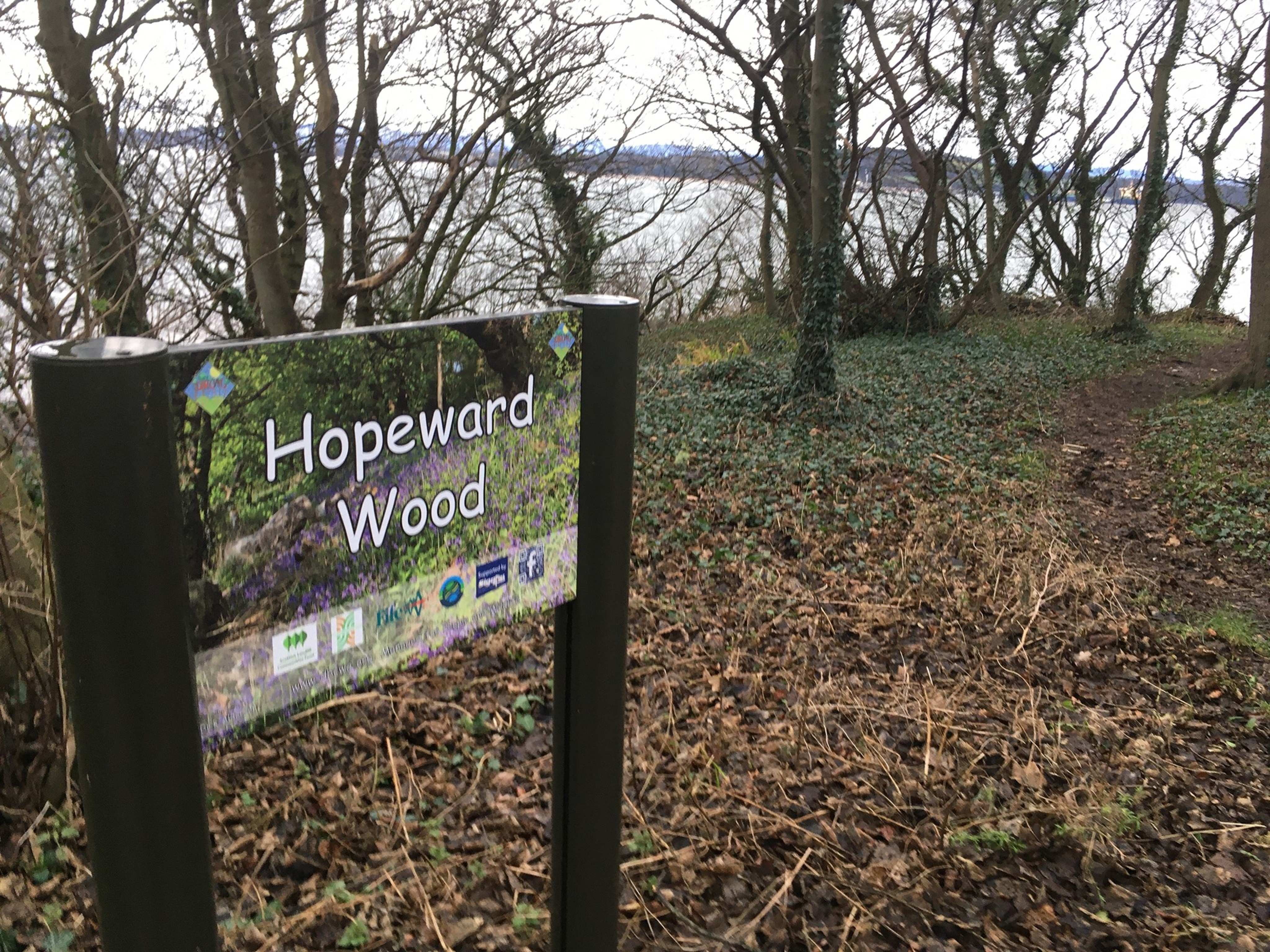 The ancient woodland areas are protected and date back to the 1780s.