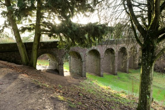 Brechin Den is in line for improvement works.